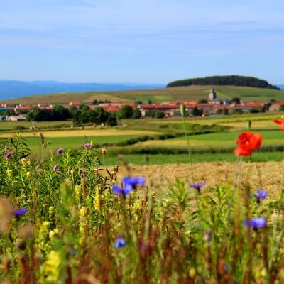 Le village du Bouchet-Saint-Nicolas