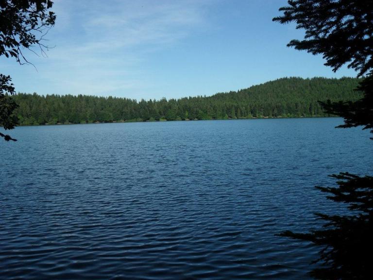 Lac 1